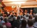 Konzert auf der Burginsel Delmenhorst 2007